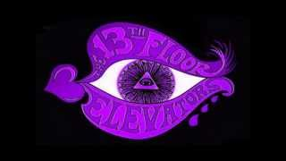 Watch 13th Floor Elevators Never Another video