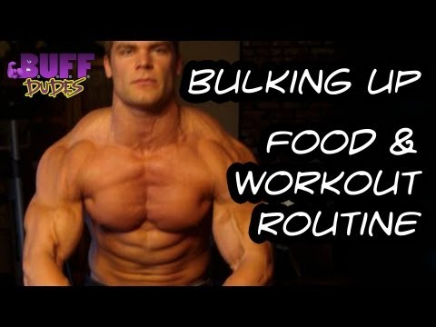 Bulking Up - Daily Diet and Workout Routine