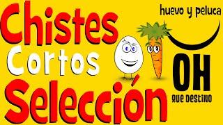 Chistes Cortos | Chistes Buenos Buenisimos Graciosos - Chiste Para Reir – 2015 – Huevo Y Peluca