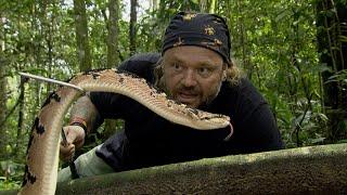 A SERPENTE MAIS TEMIDA DA AMAZÔNIA! | RICHARD RASMUSSEN
