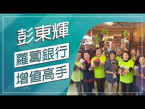 台灣-草地狀元-20190128 1/2 蘿蔔銀行增值高手