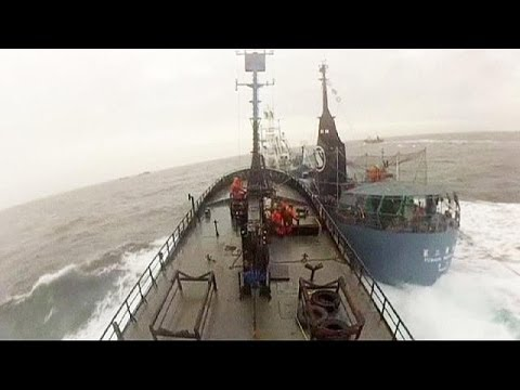 Video: Anti-whaling activists accuse Japan of ramming vessel