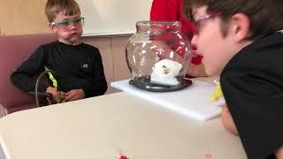 Marshmallow in Vacuum Chamber