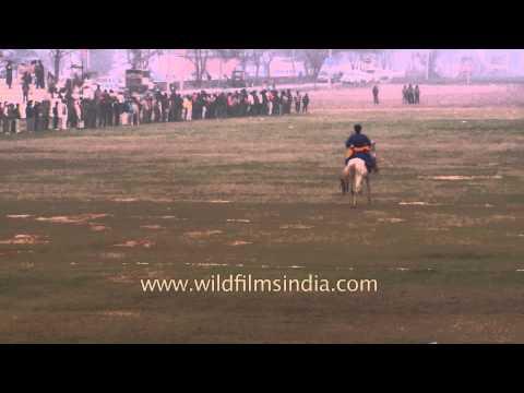 Horse race - Kila Raipur Sports festival 2014
