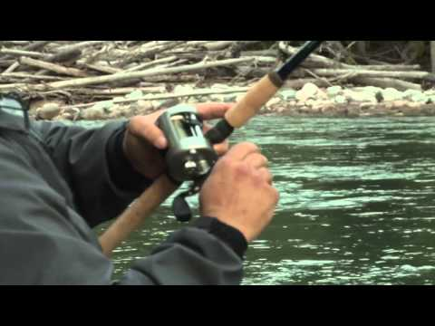 Skeena Tributary Steelhead - BC Outdoors Sport Fishing S01E07