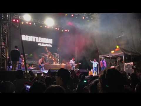 Gentleman- intro Reggae Life México
