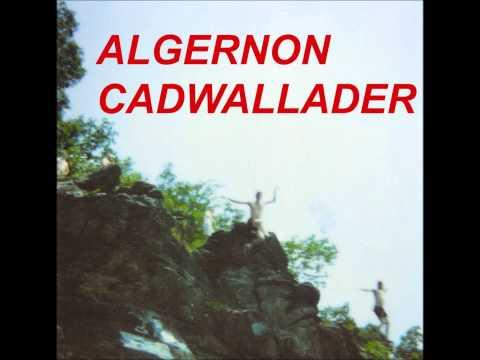 Algernon Cadwallader - I Wanna Go To The Beach