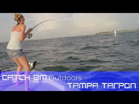 Tampa Tarpon Fishing  Tarpon Fishing in Tampa Bay Boca Grande Tarpon
