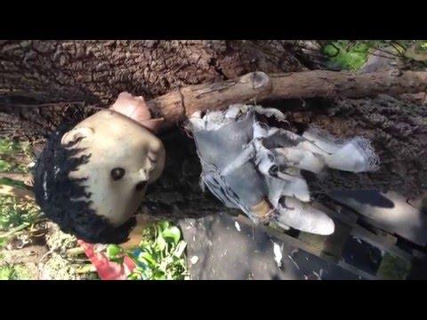 Isla de las Muñecas: Una mirada a Xochimilco