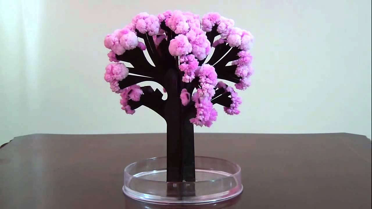 Blossom Tv Show Magic Sakura Tree - Yo...