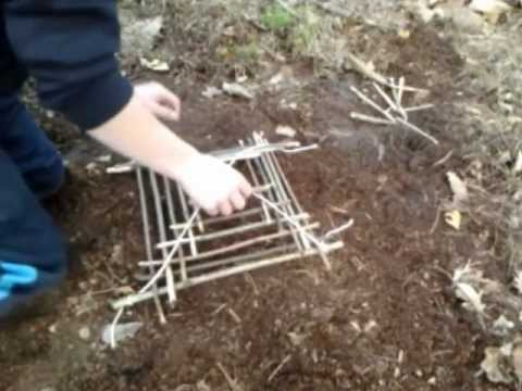 Bird Trap Cage Is Easy To Make Youtube