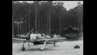 Alas de la Luftwaffe- Focke-Wulf FW 19O