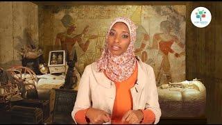 كورس ال DNA يكشف اسرار التاريخ - إزاي بندرس الـ DNA القديم؟ #2