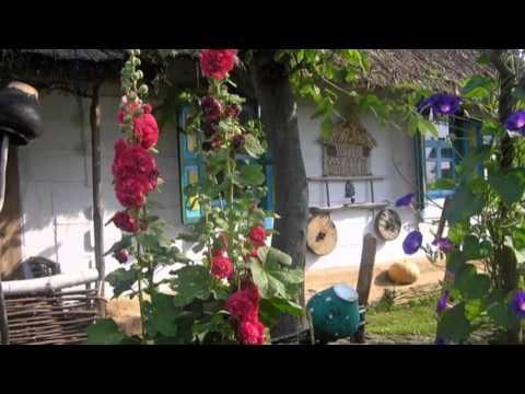 Два кольори-Гурт Експрес