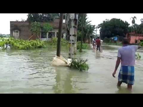 Flood 2015 Manickpur , Belmuri, Dhaniakhali, Hooghly