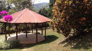 House for Sale in Costa Rica, Landscaped property w/ 3 bedroom city view house - 3199