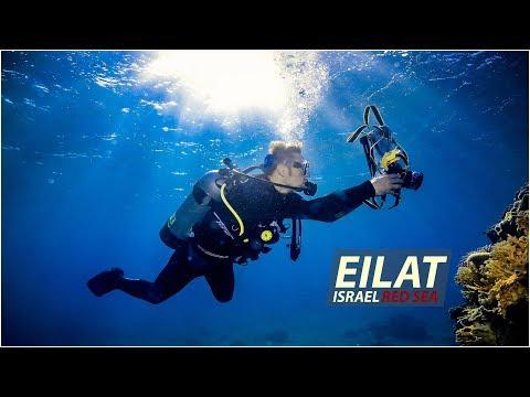 Eilat Israel / Эйлат Израиль