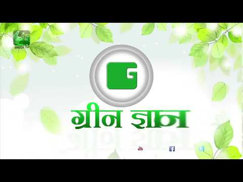 Green Gyan- Kya Karein Kya Na Karein- Fact 8 Green TV