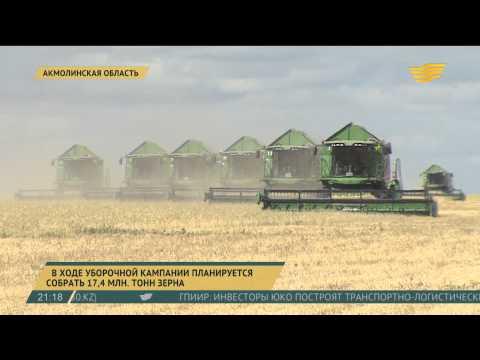 Зерно нового урожая уже идет на экспорт