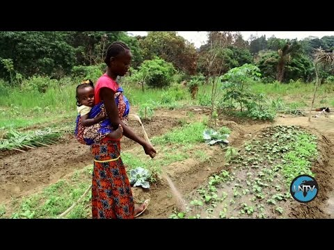 Republic of the Congo: Seeds of Hope