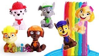 Learning Video for Kids Paw Patrol Rainbow Slide in Pool