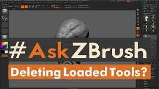 AskZBrush   How can I delete tools from the tool p