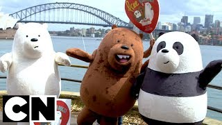 We Bare Bears | Bear Hugs in Sydney ❤️ | Cartoon Network