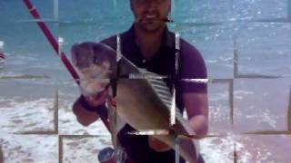 DORADA  CHICO 2011 XL2, SURFCASTING CADIZ, CHICOSURFCASTING. daiwa tournament 33