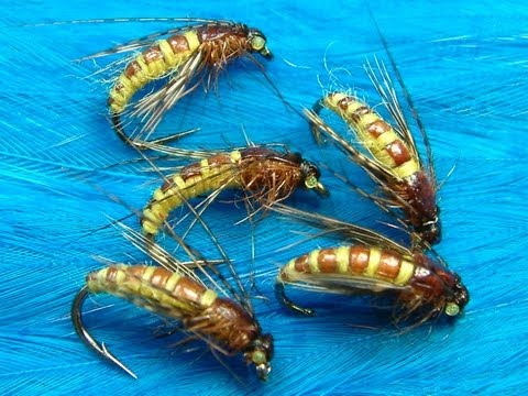 Tying the McPhail Caddis Pupa by Davie McPhail.