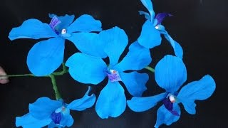 How to make Paper Flowers Blue Vanda Orchid \ Vanda coerulea( flower # 156)