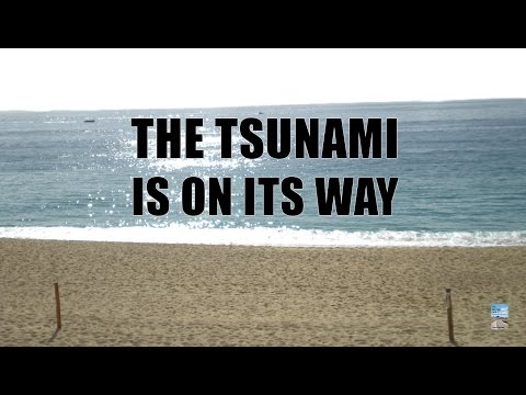 Financial Crisis Tsunami Of Massive Debt As Central Banks Negative Interest Rates Begin! video