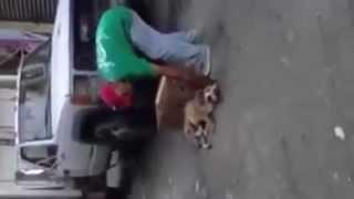 Recolectores de basura del Estado de México tiran vivo a un perro al camión