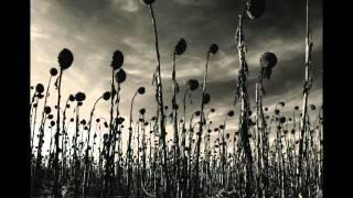 Watch Dead Can Dance Opium video