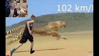 """Top Funny & Fails Compilation # 21   xQc """"gaming warlord"""" breaks deadlift world record"""