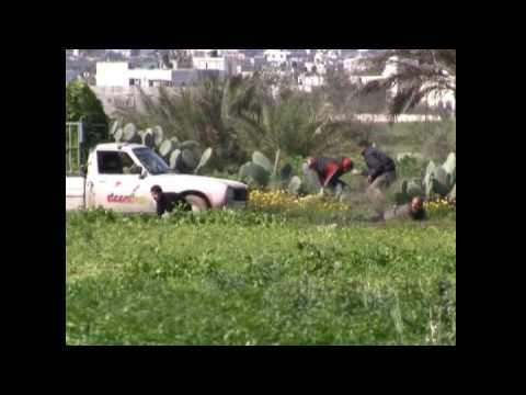 Israeli Military Shoot Gaza Farmer Video