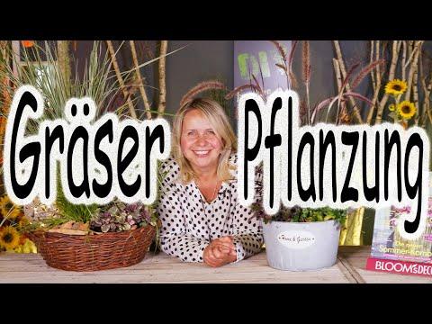 DIY: Gräser Pflanzung | Ziergras | Gartendeko Pflanzen | Eingangsdeko vor der Haustür | Floristik24