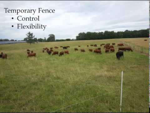 Systems Approach to Building Soil Health and Profitable Livestock Product, Johnny Rogers