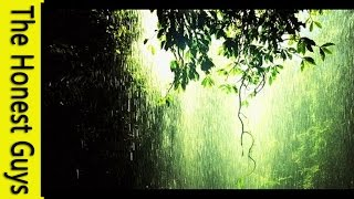 Relaxation Music - 1 Hour Gentle Rain Meditation