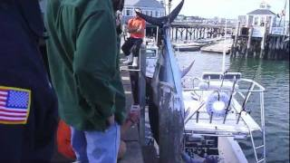800 pound Tuna being unloaded off High Hook