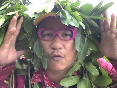 [ Trailer Phim Hài Tết ] Đại Gia Chân Đất | Trung Hiếu ,  Quang Tèo thumbnail
