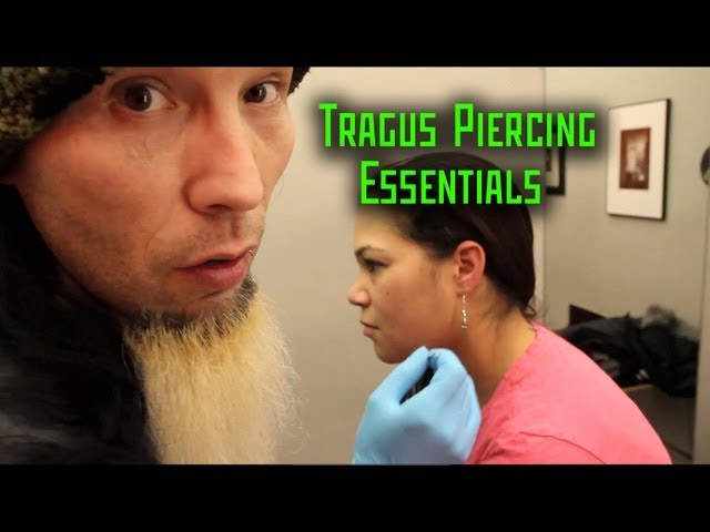 Tragus Piercing Essentials- THE MODIFIED WORLD