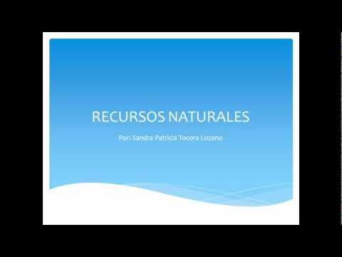 Recursos Naturales. Renovables -No Renovables - y su Protección.
