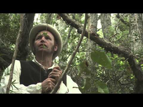 La Travesía de Darwin - Capítulo 2