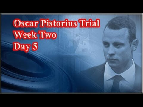 Oscar Pistorius Trial: Friday 14 March 2014, Session 2