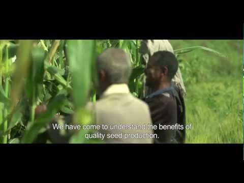 Seed for Business (short version) - Ethiopian farmers as entrepeneurs