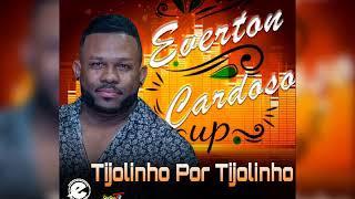 Everton Cardoso-Tijolinho Por Tijolinho