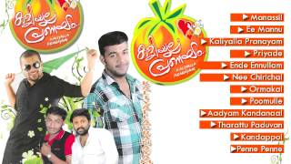 Pranayam - Kaliyalla Pranayam - A Romantic Mappila Album - Malayalam