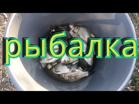 видео как мы ездим на рыбалку