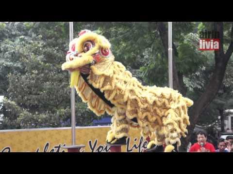 Barongsai Gong Xi Fat Cai Imlek 2565 New Year Chinese 2014