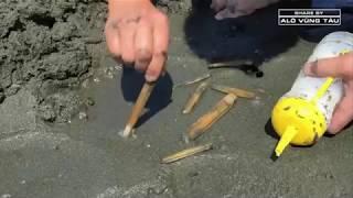 Cách bắt ốc mống tay đơn giản và vô cùng hiệu quả